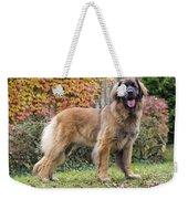 Leonberger Dog Weekender Tote Bag