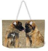 Leonberger Puppies Weekender Tote Bag