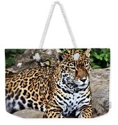 Leopard At Rest Weekender Tote Bag