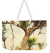 Leopard Eating His Victim On A Tree In Tanzania Weekender Tote Bag