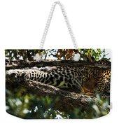 Leopard In A Tree Weekender Tote Bag