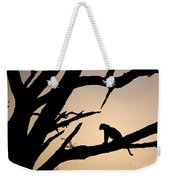 Leopard Sitting In A Tree Weekender Tote Bag