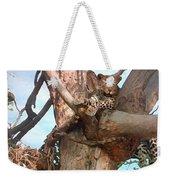 Leopard Up A Tree Weekender Tote Bag