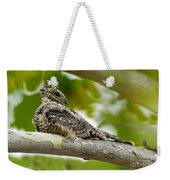 Lesser Nighthawk On Branch Weekender Tote Bag