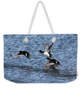 Lesser Scaup Ducks Weekender Tote Bag