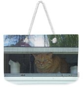 Let Me Out Cat Picture Weekender Tote Bag
