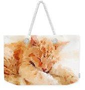 Let Sleeping Cats  Weekender Tote Bag