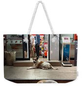 Let Sleeping Dogs Lie Where They May Weekender Tote Bag