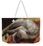 Let Sleeping Kitties Lie Weekender Tote Bag