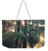 Let Your Light Shine Through Weekender Tote Bag