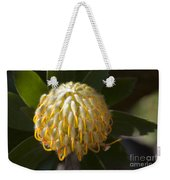 Leucospermum  -   Yellow Pincushion Protea Weekender Tote Bag