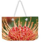 Leucospermum Pincushion Protea Flower - Tropical Sunburst - Hawaii Weekender Tote Bag