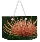 Leucospermum  Pincushion Protea Tropical Sunburst Protea Flower  Weekender Tote Bag