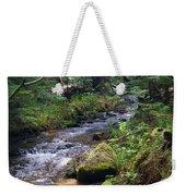 Liberty Creek 2014 #3 Weekender Tote Bag