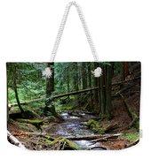 Liberty Creek 2014 #5 Weekender Tote Bag