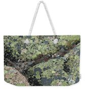 Lichen And Granite Img 6187 Weekender Tote Bag