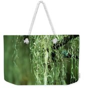Lichen Hangs From A Tree  Corvallis Weekender Tote Bag