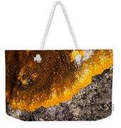Lichen It Weekender Tote Bag