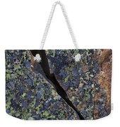 Lichen On Granite Weekender Tote Bag by Heiko Koehrer-Wagner