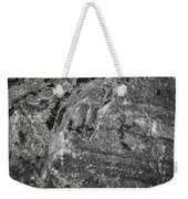 Lichen On The Whistlers - Black And White Weekender Tote Bag
