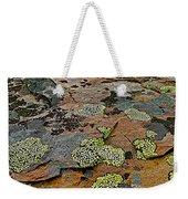 Lichens Along Trail To Plain Of Six Glaciers In Banff National Park-alberta-canada Weekender Tote Bag