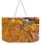 Lichens On The Shoreline Rocks 2 Weekender Tote Bag