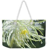 Light Catchers Weekender Tote Bag