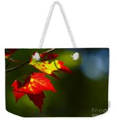 Light Gives Us All A Chance Weekender Tote Bag by Aimelle