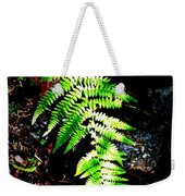 Light Play On Fern Weekender Tote Bag
