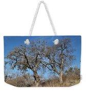 Light Posts And Trees Weekender Tote Bag