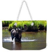Like A Bull In A China Clloset Weekender Tote Bag