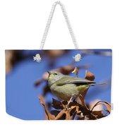 Lil' Bit - Orange-crowned Warbler Weekender Tote Bag