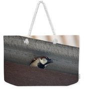 Lil Morning Peeper Weekender Tote Bag