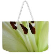 Lily 2am-114584 Weekender Tote Bag