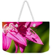 Lily And Fly Weekender Tote Bag