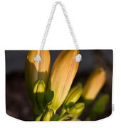 Lily Blossoms At Sunset Weekender Tote Bag