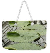 Lily Pads With Reflection Of Conservatory Roof Weekender Tote Bag
