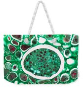 Lily Seed Embryo, Lm Weekender Tote Bag