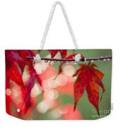 Line Of Reflections Weekender Tote Bag by Anne Gilbert