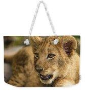 Lion Cub Close Up Weekender Tote Bag