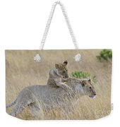 Lion Cub Playing With Female Lion Weekender Tote Bag