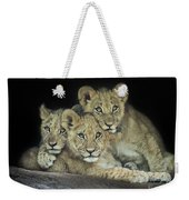 Three Lion Cubs Weekender Tote Bag