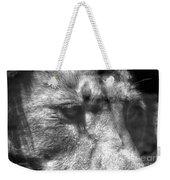 Lion Eyes Weekender Tote Bag