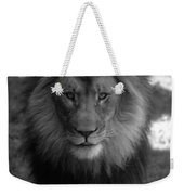 Lion Going For A Haircut Weekender Tote Bag