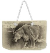Lion Hugs In Heirloom Finish Weekender Tote Bag