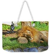 Lion In Repose Weekender Tote Bag