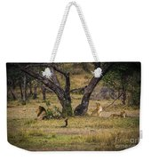 Lion In The Dog House Weekender Tote Bag