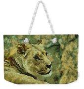 Lion Looking Back Weekender Tote Bag
