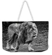 Lion On The Prowl Weekender Tote Bag