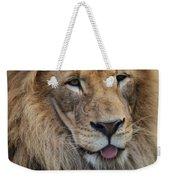 Lion Portrait Panting Weekender Tote Bag